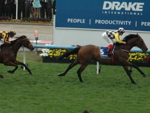 Precedence Winning The Moonee Valley Cup