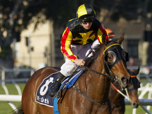 Blake Shinn will take the ride on Kirramosa in the Group 1 Epsom Handicap at Randwick on Saturday.