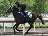 Nooresh Juglall takes Quechua for a leisurely stroll around Sha Tin