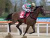 Super Jockey takes the Korea Sprint