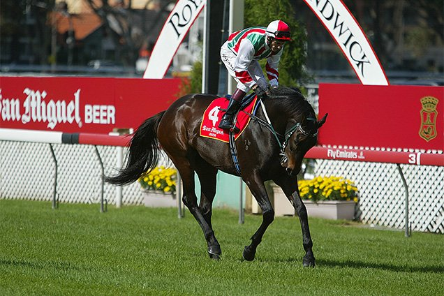 Miss Potential running in the San Miguel Sapphire Stks