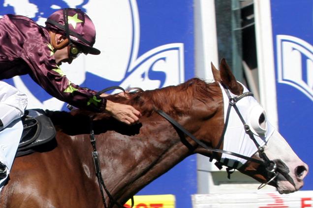 Apache Cat winning the Timbercorp - Australia Stakes