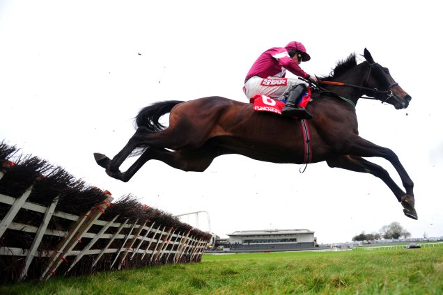 Trifolium winning the Ryan's Cleaning Events Specialists Hurdle (Grade 3)