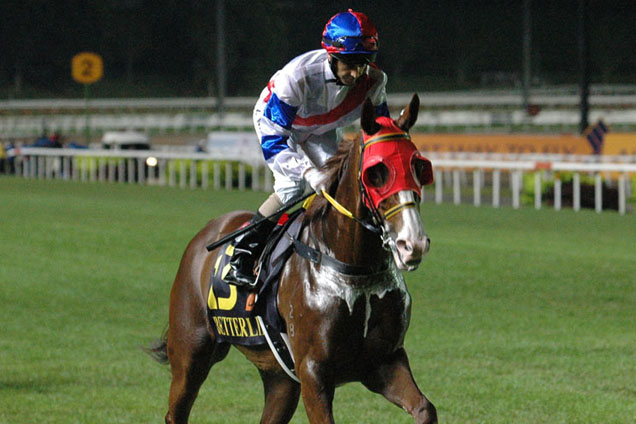 Better Life running in the SINGAPORE AIRLINES INTERNATIONAL CUP 2013