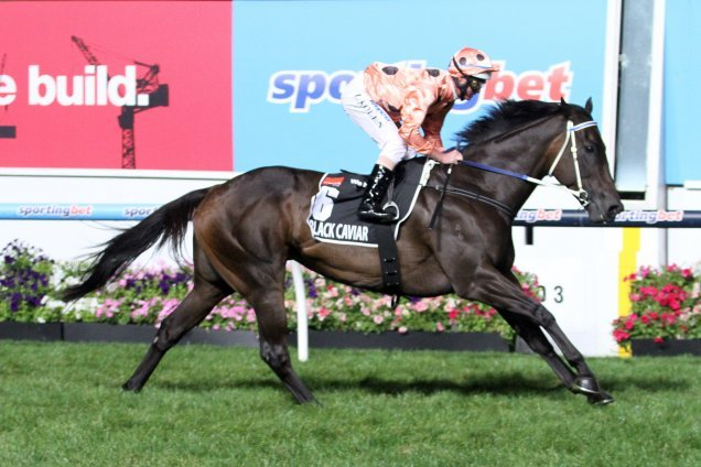 Incomparable Black Caviar - equal highest Timeform rated mare of all time