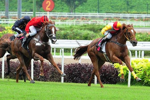 Brilliant Deal winning the PANASONIC IMAGING SYSTEMS STAKES KRANJI STAKES B