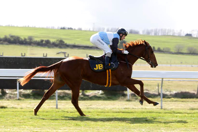 Survived running in the EBF Stallions Highfield Farm Flying Fillies' Stakes (Listed)