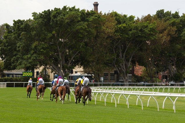 Stock Image - Randwick Racecourse
