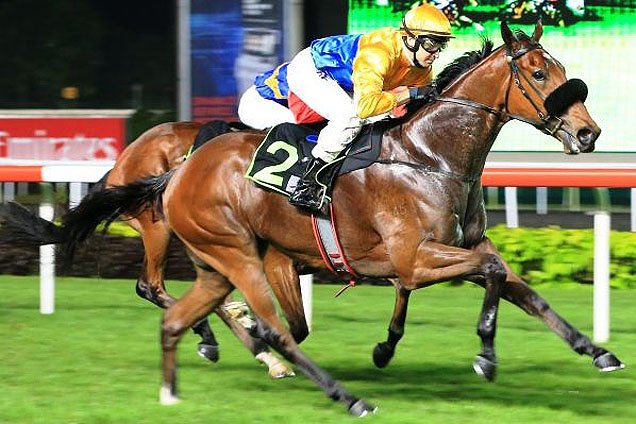 Magstock winning the RESTRICTED MAIDEN