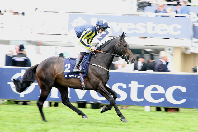 Percy Street running in the Investec Private Banking Stakes (Handicap)