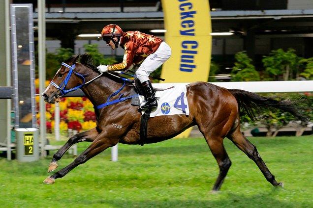 Showing Character winning the LAI CHI KOK HANDICAP