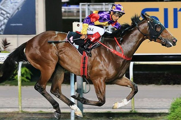 singapore horse racing form guide