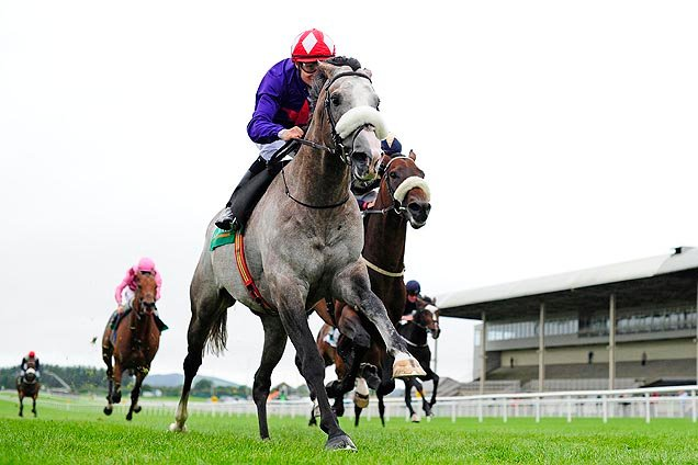 Success Days winning the Kilfrush Stud Royal Whip Stakes (Group 3)