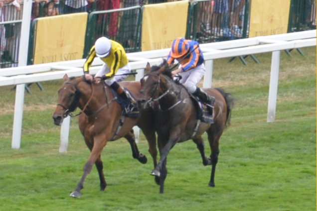 Watch The Battle Of Big Orange & Order Of St George In The 2017 Ascot Gold Cup
