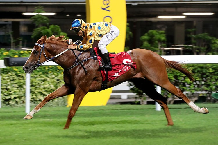 E-super winning the THE FAKEI CUP (HANDICAP)
