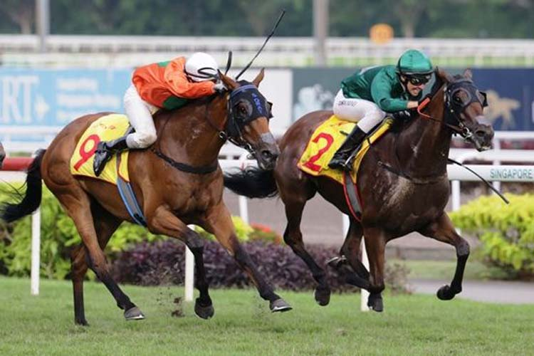 Gilt Complex winning the DESTER SINGAPORE GOLD CUP