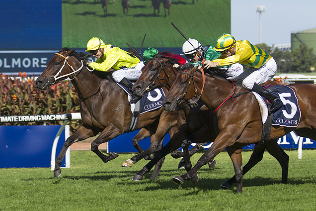 Concluding Stages of Coolmore Classic