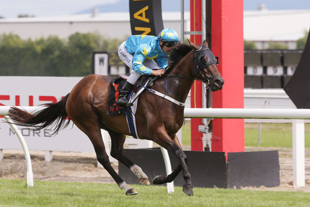 Irish Moon winning the Allied Security Hcp