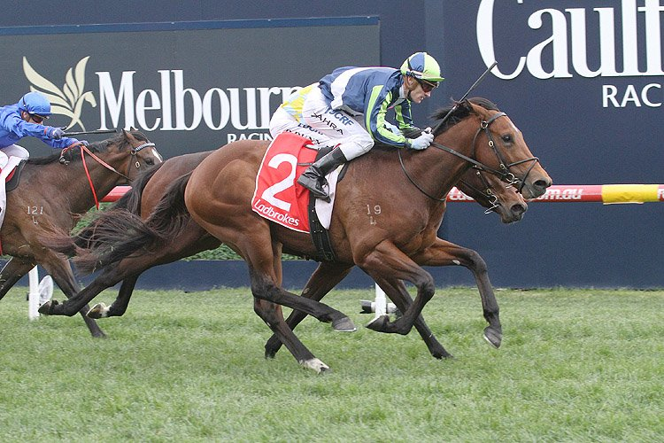 Merchant Navy winning the H.D.F. McNeil Stakes