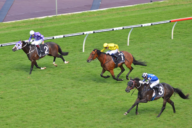 Mongolian Wolf (right) wins the Packer Plate