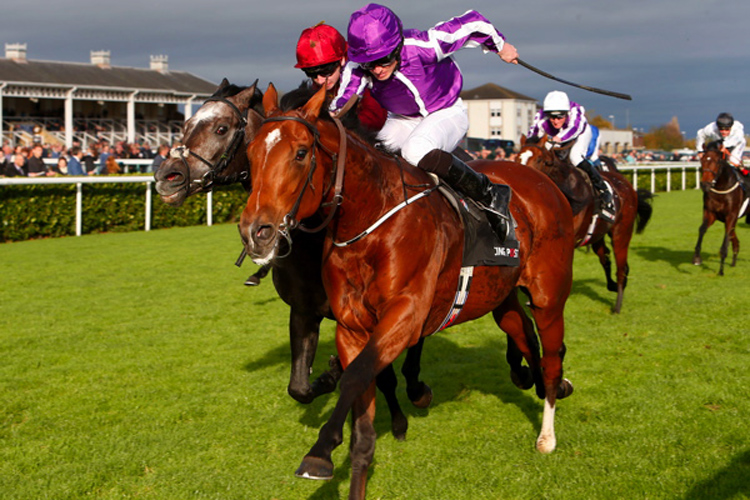 Saxon Warrior winning the Racing Post Trophy Stakes (Group 1) (Str)
