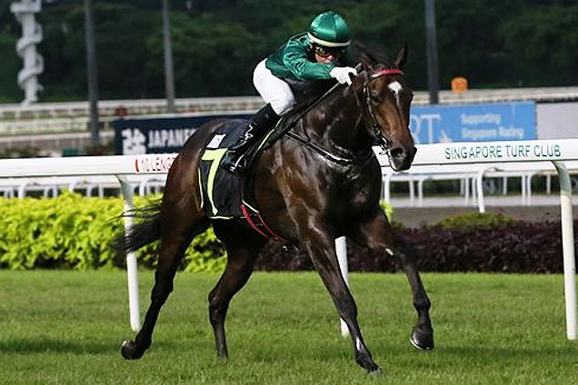 Webster winning the RESTRICTED MAIDEN