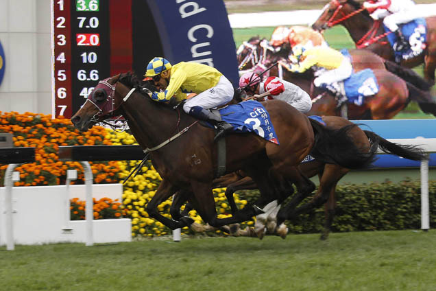 Werther Books Dubai Berth With Hong Kong Gold Cup Win