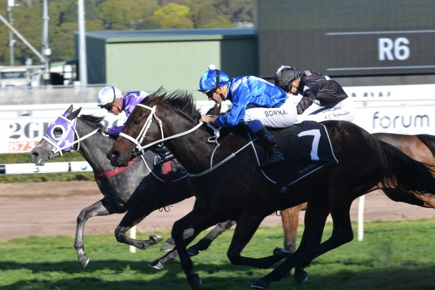 Winx's narrow first up win after bombing the start by five lengths