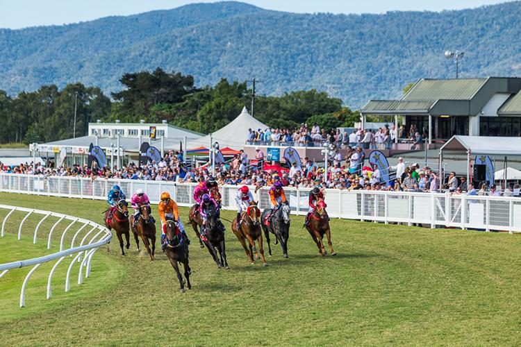 Racecourse : Cairns (Australia)