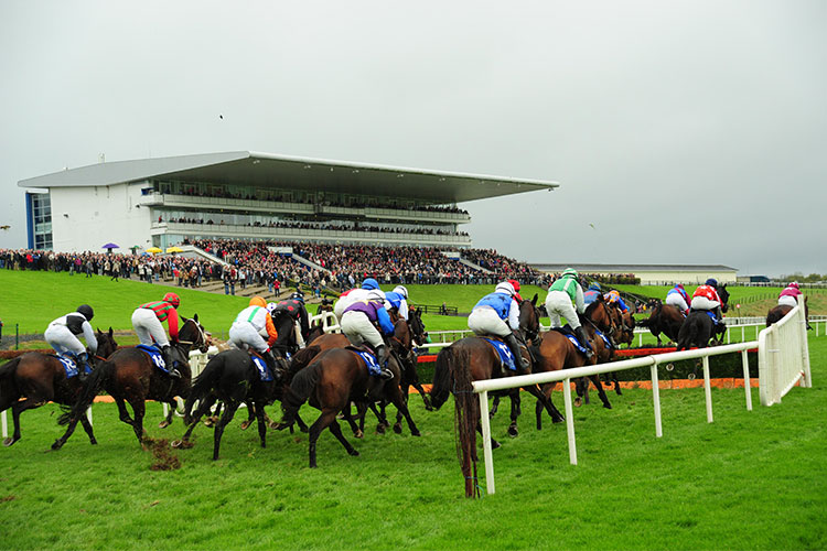 Racecourse : Limerick (IRE)