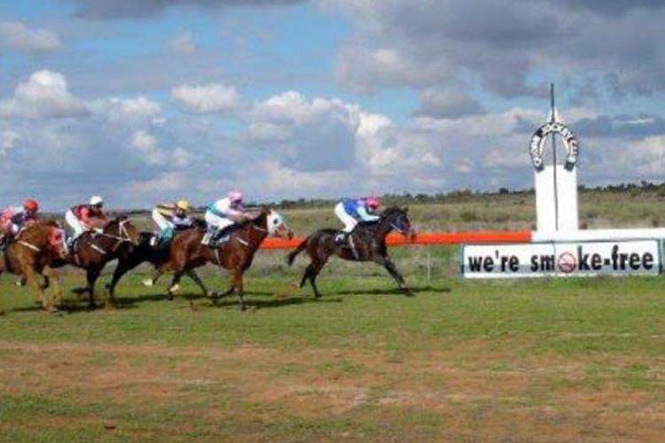 Racecourse : Quorn (Australia)