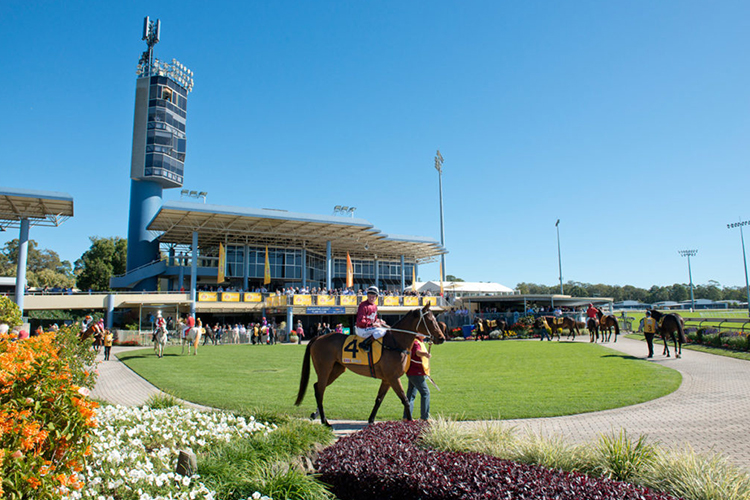 Racecourse : Sunshine Coast (Australia)