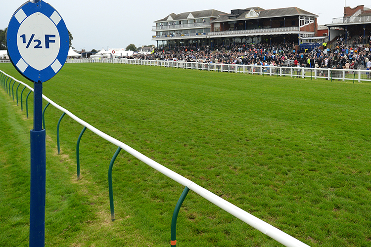 Racecourse : Ayr (Great Britain)