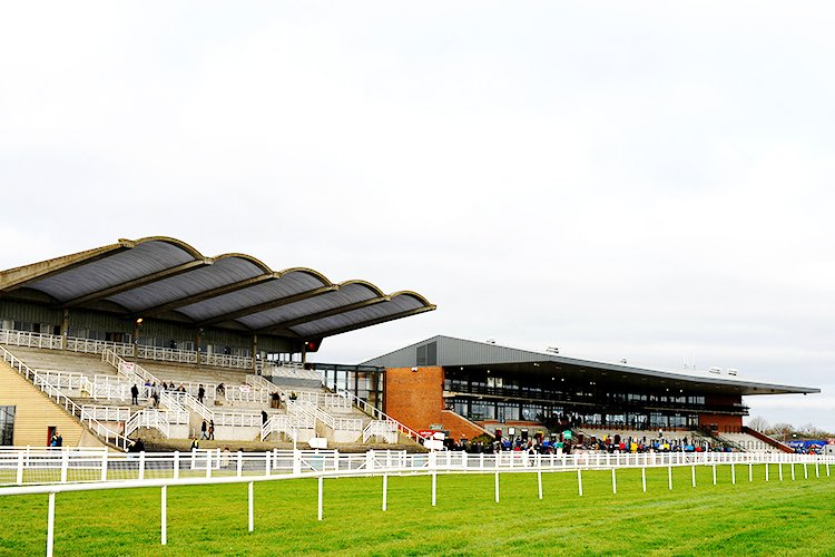 Racecourse : Fairyhouse (Ireland)
