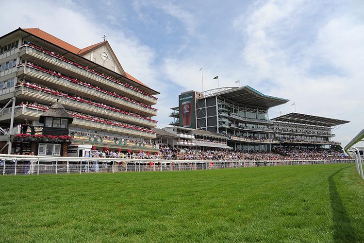 Racecourse : York (Great Britain)