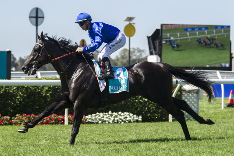 2018 Hobartville Stakes: Tips and Race Preview