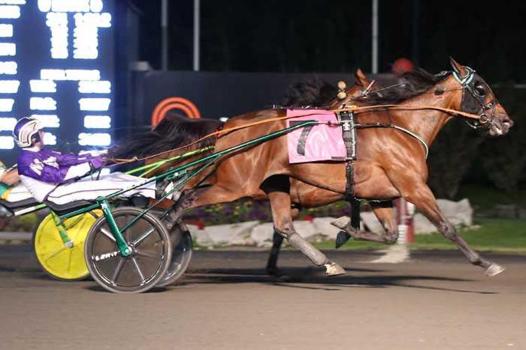 Ariana G winning her Maple Leaf Trot elimination
