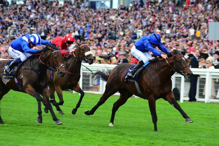 Blue Point winning the King's Stand Stakes (Group 1) (British Champions Series)
