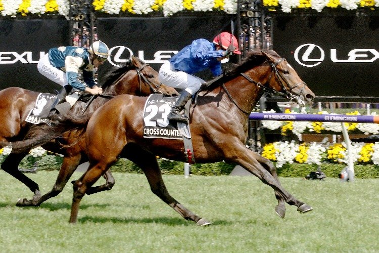 CROSS COUNTER winning the Melbourne Cup.