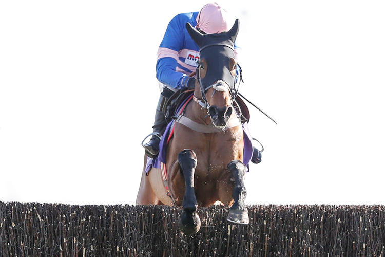 CYRNAME winning the Betdaq Now 2% Commission Pendil Novices' Steeple Chase at Kempton Park in Sunbury, England.