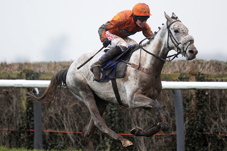 NELSON'S TOUCH winning the Court Farm Butchers Maiden Hurdle Race at Taunton in England.