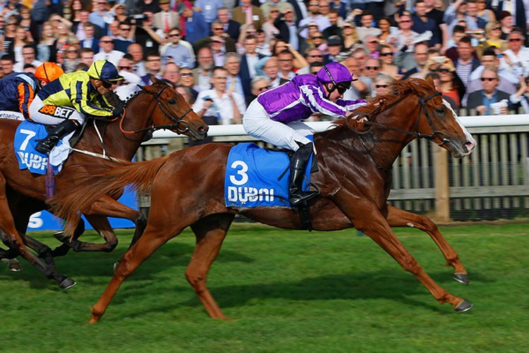 Norway winning the Godolphin Flying Start Zetland Stakes (Listed)