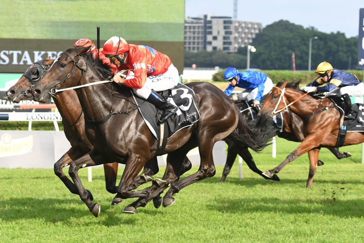 2018 Champagne Stakes: Seabrook gets a deserved G1