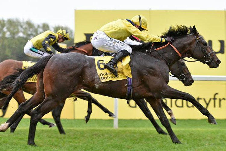 Young Rascal winning the Dubai Duty Free Legacy Cup Stakes (Group 3)