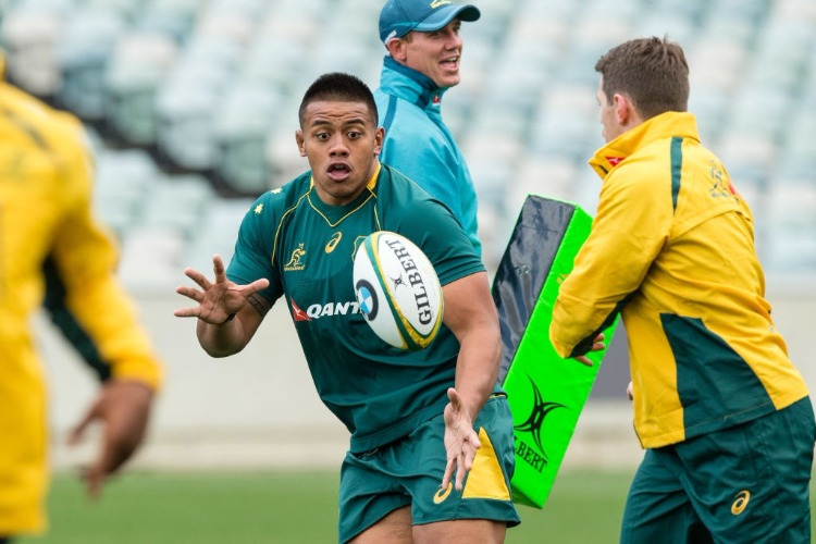 ALLAN ALAALATOA runs during the Australian Wallabies Captain's Run at GIO Stadium in Canberra, Australia.