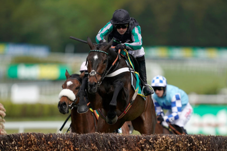ALTIOR winning the bet365 Gold Cup Handicap Steeple Chase at Sandown Park in Esher, England.