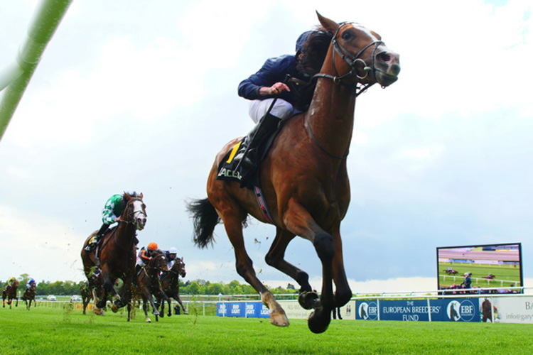 Anthony Van Dyck winning the RaceBets Derby Trial Stakes (Listed)