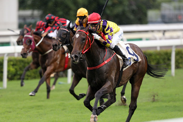 Champion's Way winning the Lion Rock Trophy Hcp
