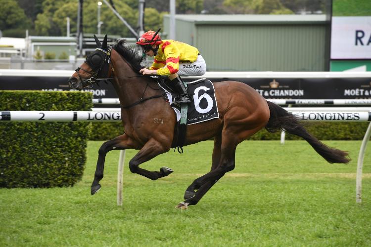 COLADA winning the Yulong Australia Stan Fox Stakes.