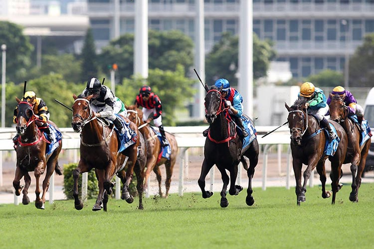 EXULTANT winning the Chater Cup.